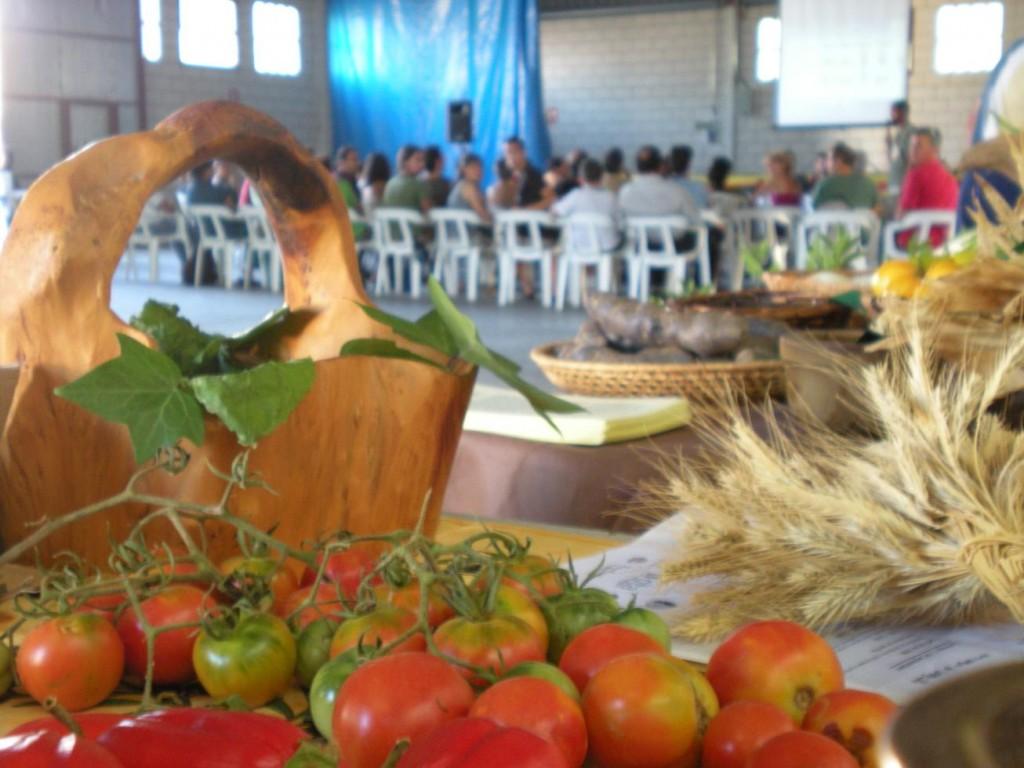 La asociación Red de Semillas de Aragón y la SAT Kiwicha organizan en Alcorisa una jornada agronómica