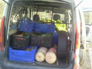 Recuperando la soberanía alimentaria en Teruel