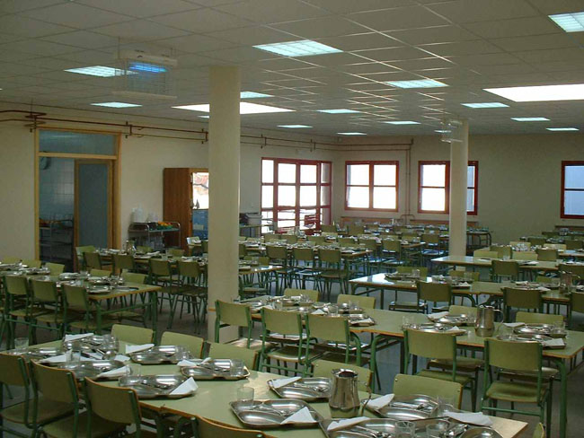 Podemos recuerda al Gobierno aragonés su compromiso de garantizar que los comedores escolares no sirvan comida precocinada