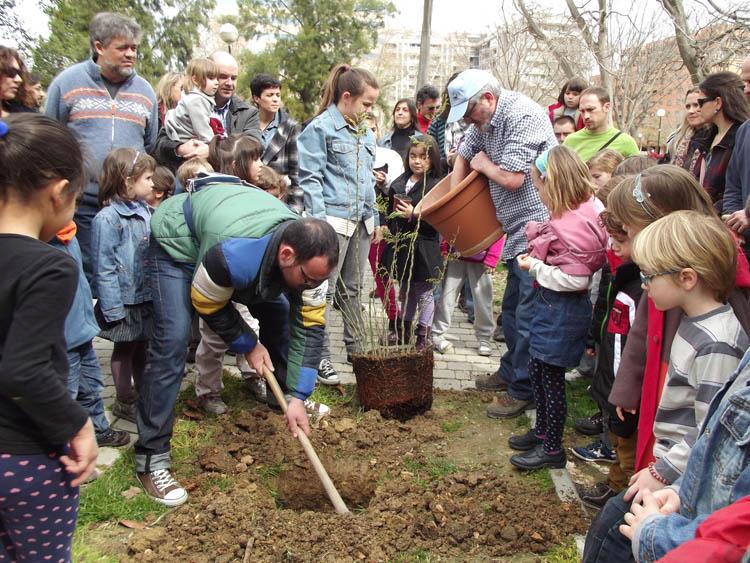 La AV de Casetas plantará 31 árboles por cada niño y niña nacida en el barrio durante 2017