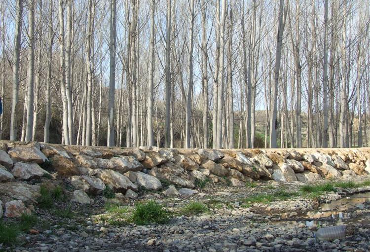 Contra el trasvase del río Queiles
