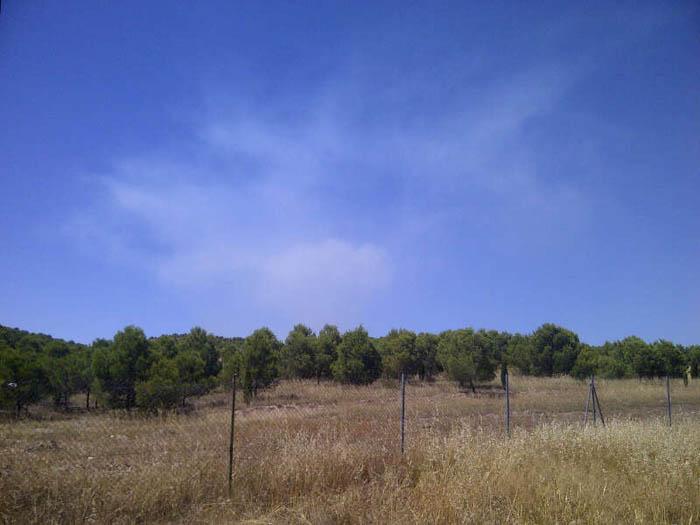 Santisteve solicita a Defensa el retranqueo del campo de maniobras para futuras crecidas extraordinarias del Ebro