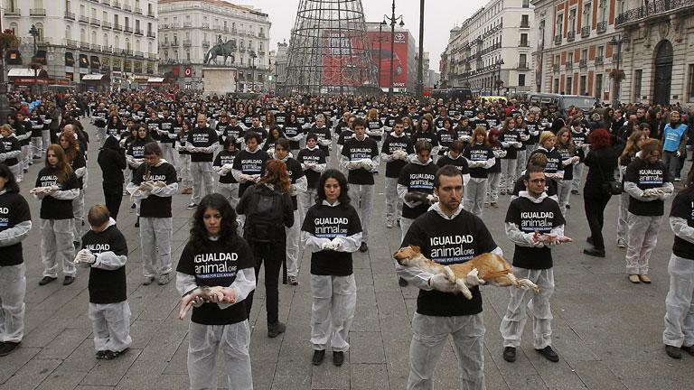 """IU recuerda que """"queda mucho camino por recorrer en la conquista de los derechos de los animales"""" en la conmemoración del día mundial"""