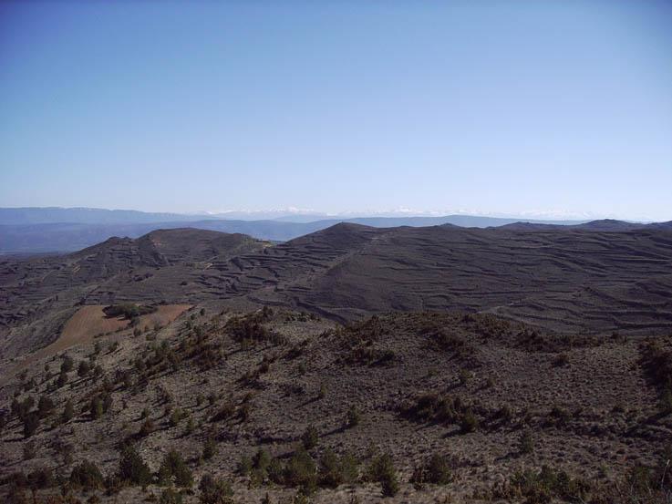 Presentan una enmienda a la totalidad al Proyecto de modificación de la Ley de Montes de Aragón
