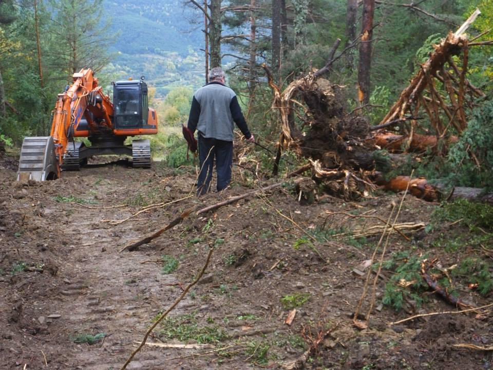 Ecologistas denuncia la «ilegalidad» de las obras iniciadas por la DPH y el Ayuntamiento de Yésero