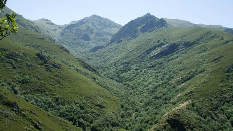 Ecologistas en Acción tacha de «irresponsable» la aprobación del proyecto de Ley de Parques Nacionales