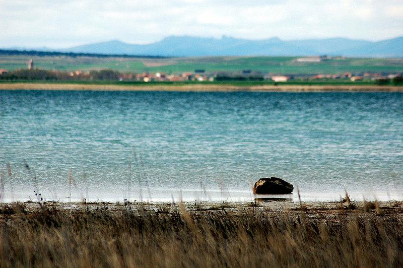 Más de la mitad de humedales como Gallocanta se encuentran en mal estado de conservación