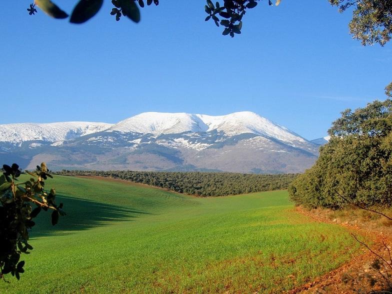 ¿Qué quiere ser Aragón?