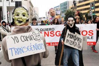 Aumenta a 8.000 el número de demandantes contra Monsanto por el efecto cancerígeno del glifosato