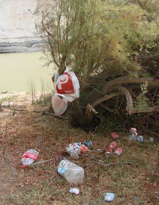 Utebo contrata un equipo forestal de cinco personas y retira 72 toneladas de residuos del Ebro