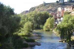 Río Cinca a su paso por Fraga. Foto: Ecologistas en Acción