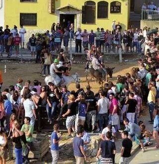 """El PACMA interpondrá una denuncia contra el Ayuntamiento de Binazet si celebra """"La Gran Burrada"""""""