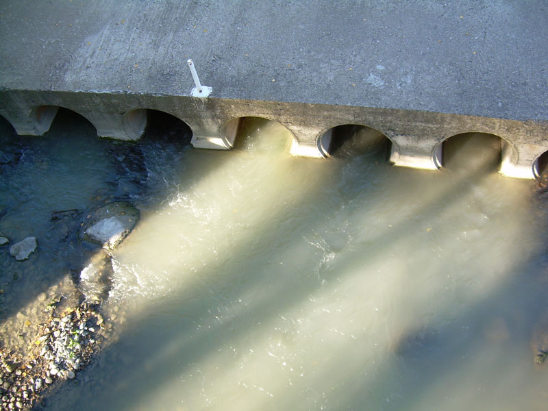 Ecologistas en Acción organizará una visita con eurodiputados para acercar a Bruselas el problema del lindano