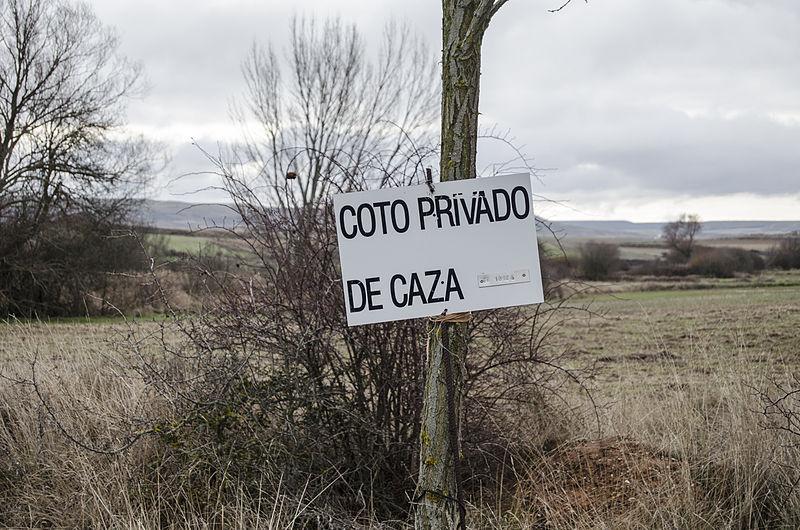 La FCQ solicita al Gobierno de Aragón que revise la actual Orden del Plan General de Caza para adecuarla a la sentencia del TS