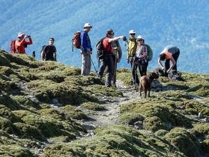 Excursionistas en la ascensión tradicional a la Peña Montañesa