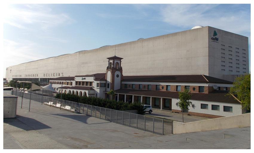 Estación Intermodal de Zaragoza. Ballena varada