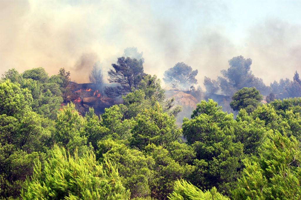 18.000 hectáreas afectadas por el incendio de Cinco Villas