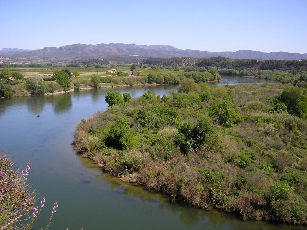 Numerosas alegaciones al Plan Hidrológico de la Cuenca del Ebro