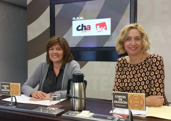 CHA e IU instan a las Cortes y al Gobierno a apoyar la Marcha del 7N
