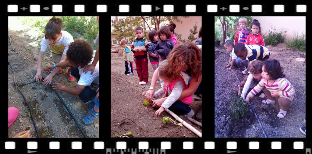 El Colegio Público Cándido Domingo de Zaragoza gana el primer premio del II Concurso Estatal de Huertos Escolares Ecológicos