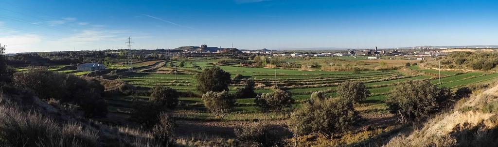 IU pide al Gobierno de Aragón que anule la Autorización Ambiental Integrada para la central de biomasa de Monzón