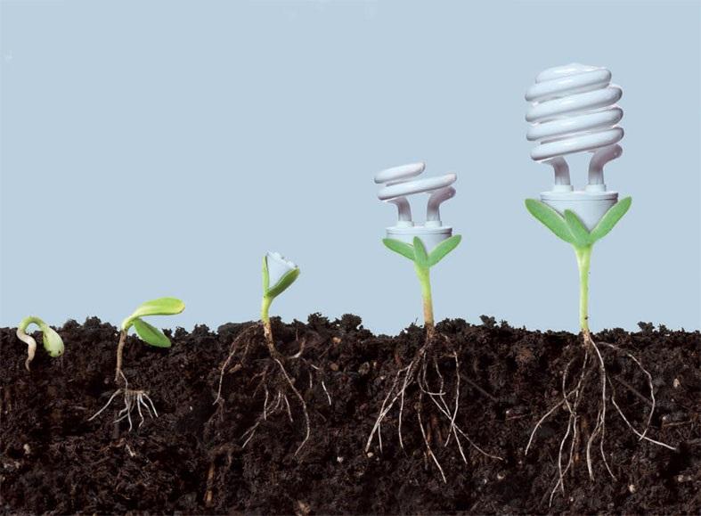 FIESTA logra ahorrar más de 2 millones de kWh a través del cambio de comportamiento