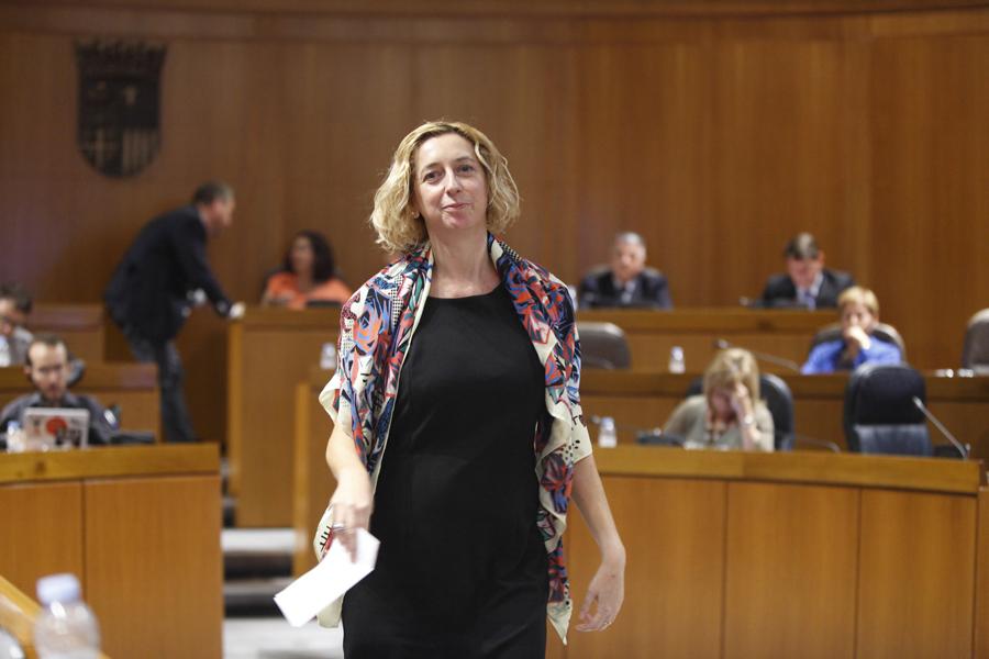 Luquin pedirá a Gastón que explique ante el Pleno los efectos que tendrá el 'impuesto al sol' en Aragón