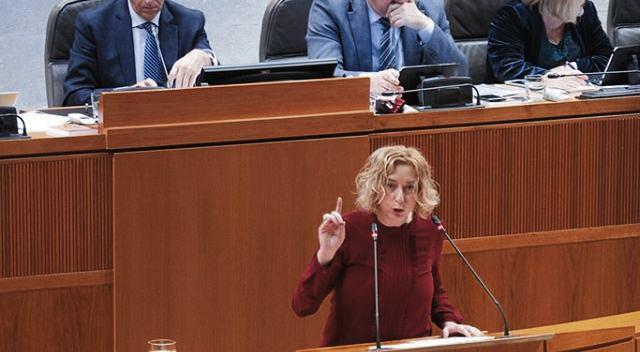 IU solicitará a Guillén que informe si piensa declarar el outlet de Pikolín de interés autonómico