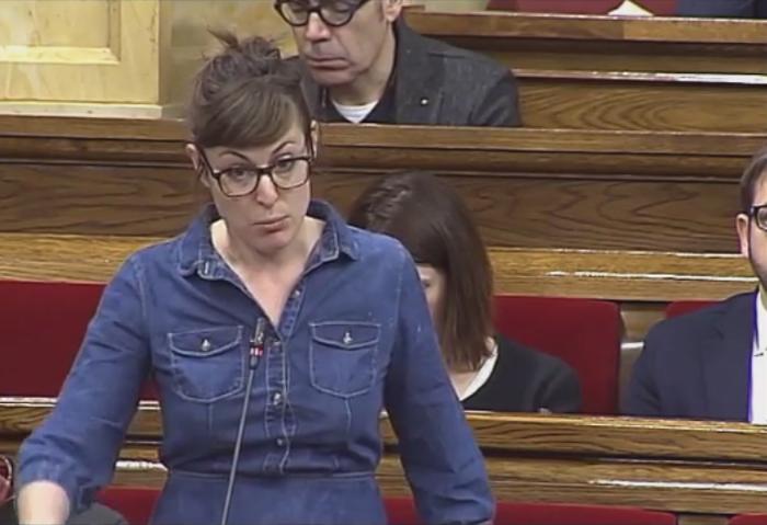 El Parlament de Catalunya es dota d'un grup de treball sobre les pistoles «Tàser»