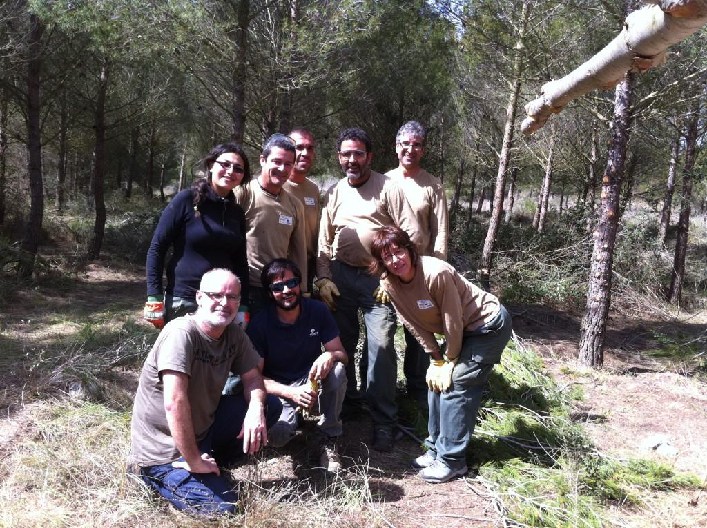 Colaboración para mantener una zona reforestada hace 20 años en Peraltilla