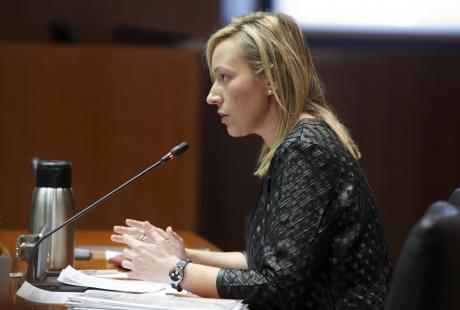 Gastón atribuye a la falta de nieve el menor crecimiento del empleo en Aragón en diciembre