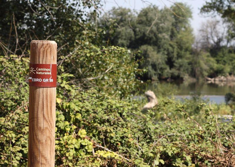 CHA solicita en las Cortes extremar la vigilancia en la Ribera Baja del Ebro