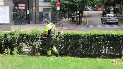 Aprobado el expediente de contratación de parques y zonas verdes de Zaragoza