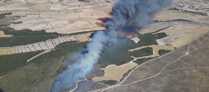 El incendio declarado en el Campo de Maniobras de San Gregorio ha afectado a 126 hectáreas