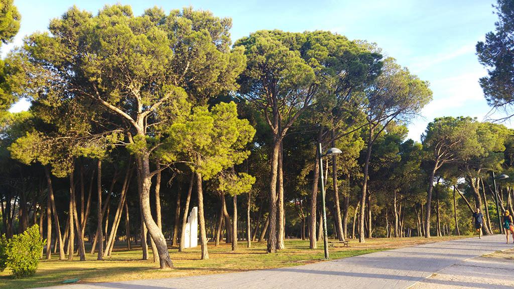FCC no consigue la certificación de calidad de al menos cuatro parques emblemáticos en Zaragoza que exigía el contrato