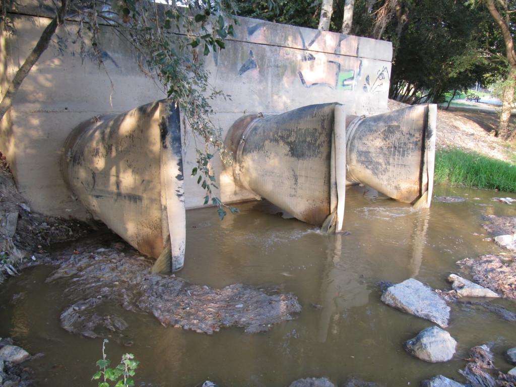 Graves problemas ambientales en el río Ebro a la altura del parque San Pablo