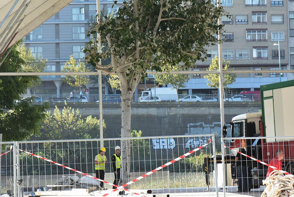 Amigos de la Tierra denuncia la «mutilación del arbolado urbano» para instalación de la Carpa del Ternasco