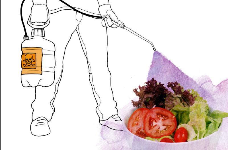 33 sustancias dañan el sistema hormonal en nuestra comida