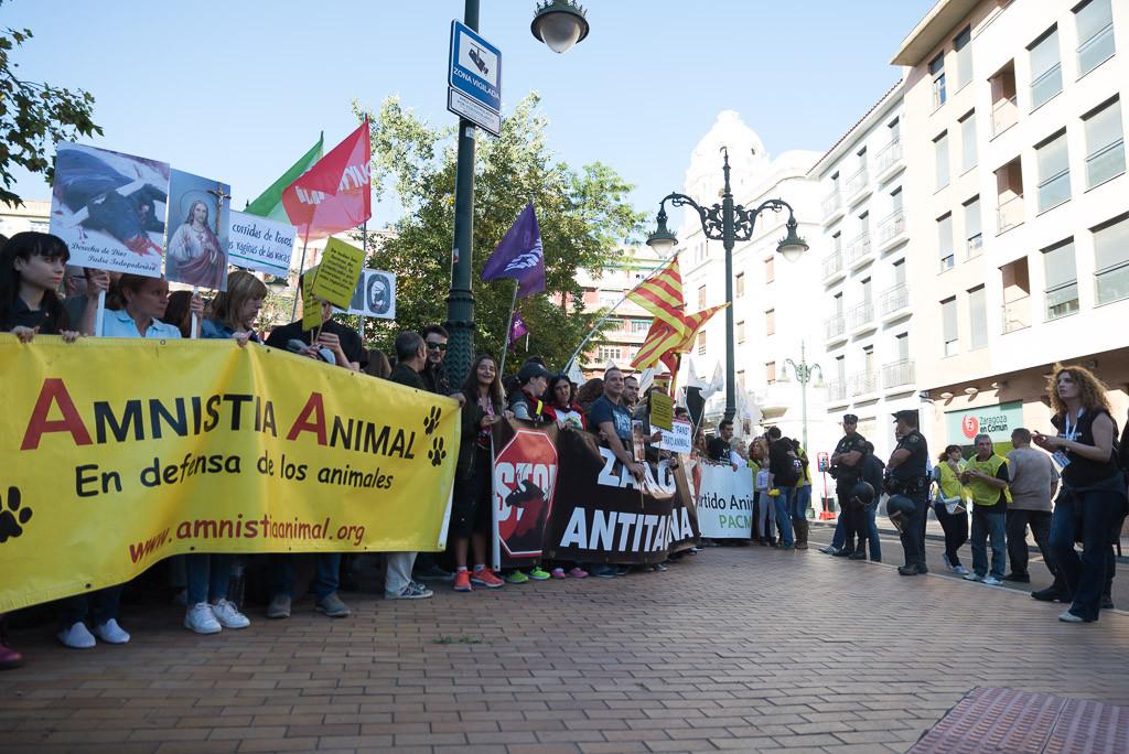 Amnistía Animal convoca una concentración antitaurina en Teruel