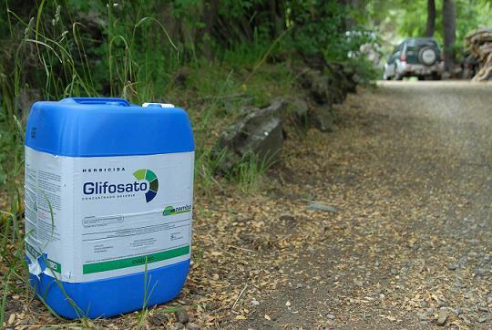 Piden la paralización del tratamiento herbicida con glifosato en la subestación eléctrica de L'Aínsa