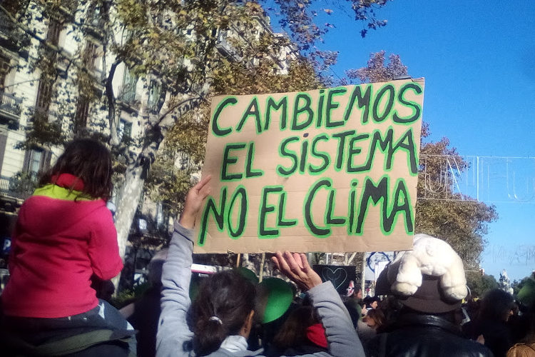REAS red de redes se suma a la convocatoria de huelga mundial por el clima