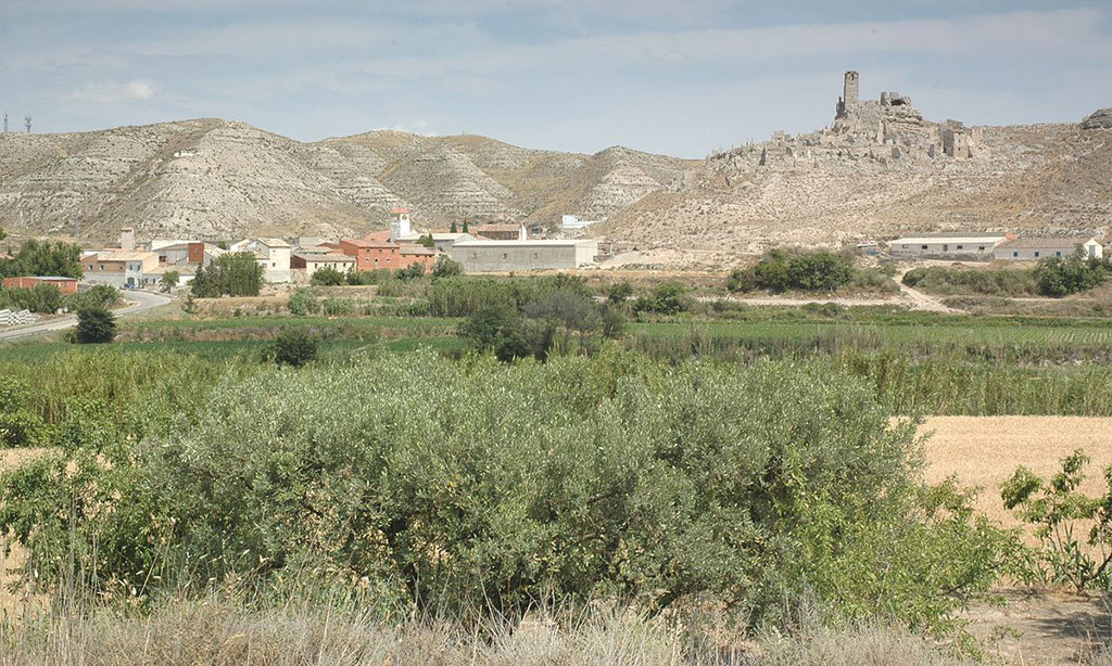 Investigan en el pueblo nuevo de Rodén un interesante yacimiento de alabastro