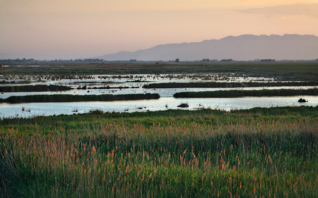 Entidades de la cuenca del Ebro apoyan un plan de gestión integral de sedimentos para toda la cuenca