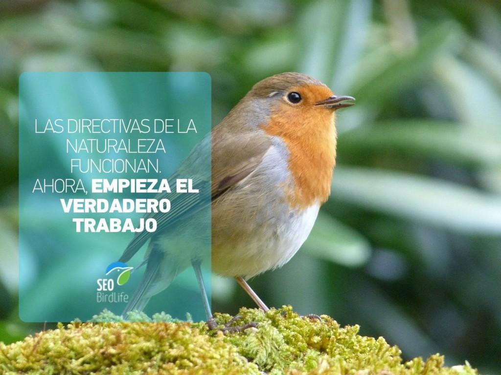 Una gran campaña pública de Ecologistas en Acción, SEO/BirdLife y WWF salva las leyes de la naturaleza de la UE