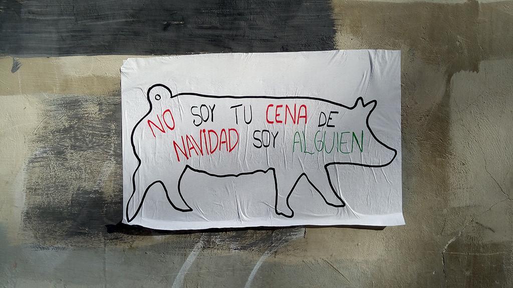 Todos los animales empiezan a ser escuchados en Zaragoza