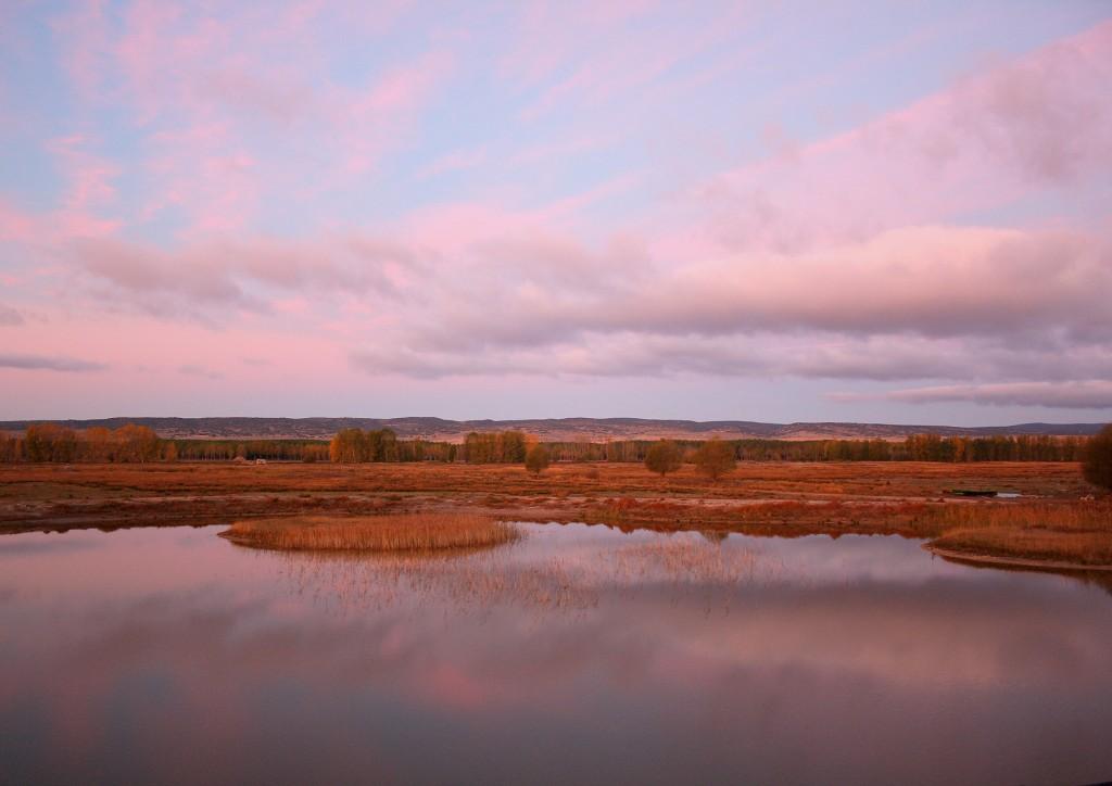 SEO/BirdLife y los regantes del río Cella colaborarán para lograr la recuperación de la laguna de El Cañizar y garantizar los riegos