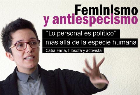 Feminismo y Derechos Animales: Ellas responden