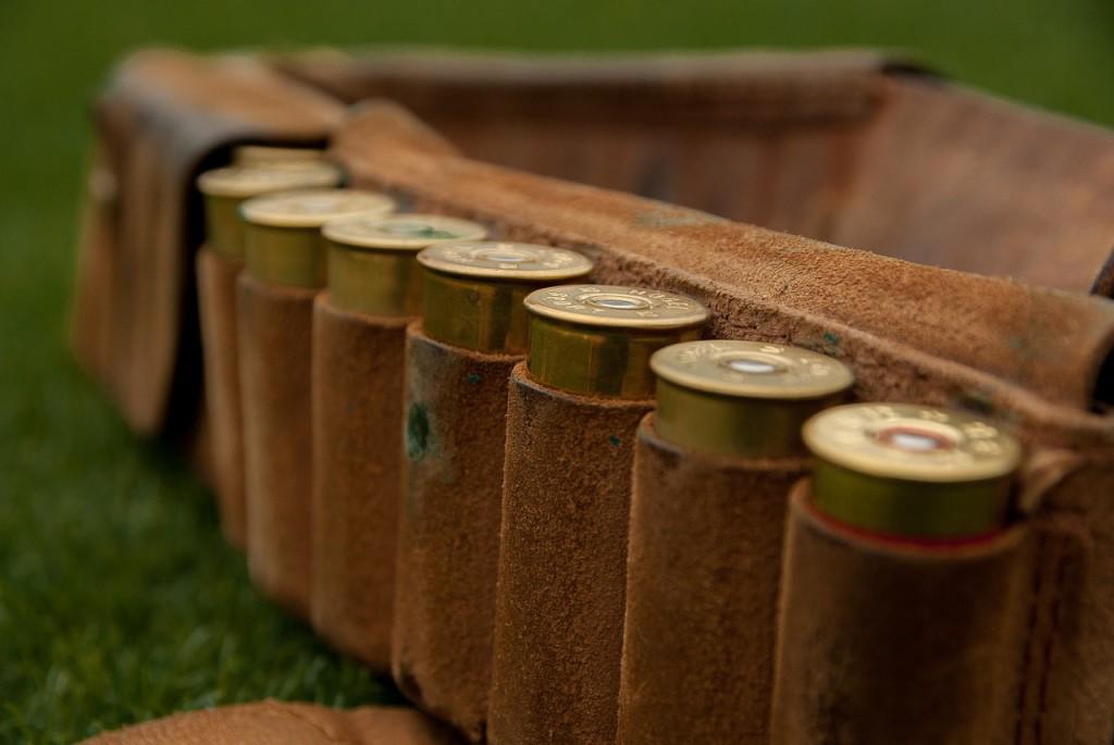 El Parque Nacional francés de Cévennes promueve prácticas de caza libres de munición de plomo