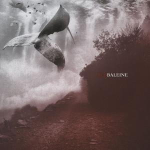 Portada del disco de Red Baleine.
