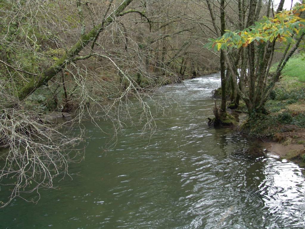 Ecologistas en Acción insta a la protección urgente de 50 nuevas Reservas Naturales Fluviales